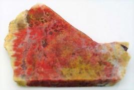 Red Moss Agate 2 Gemstone Slab Cabbing Rough - $7.25
