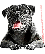 black pug dog printable wall art print png clipart digital download pet ... - $3.50
