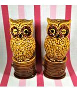 Wonderful Kitschy Vintage Figural Hoot Owls on Wood Stumps Salt and Pepp... - $14.00