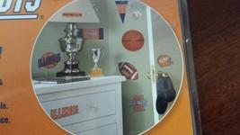 Illinois Fighting Illini Peel and Stick Appliques - Football Basketball ... - $15.47