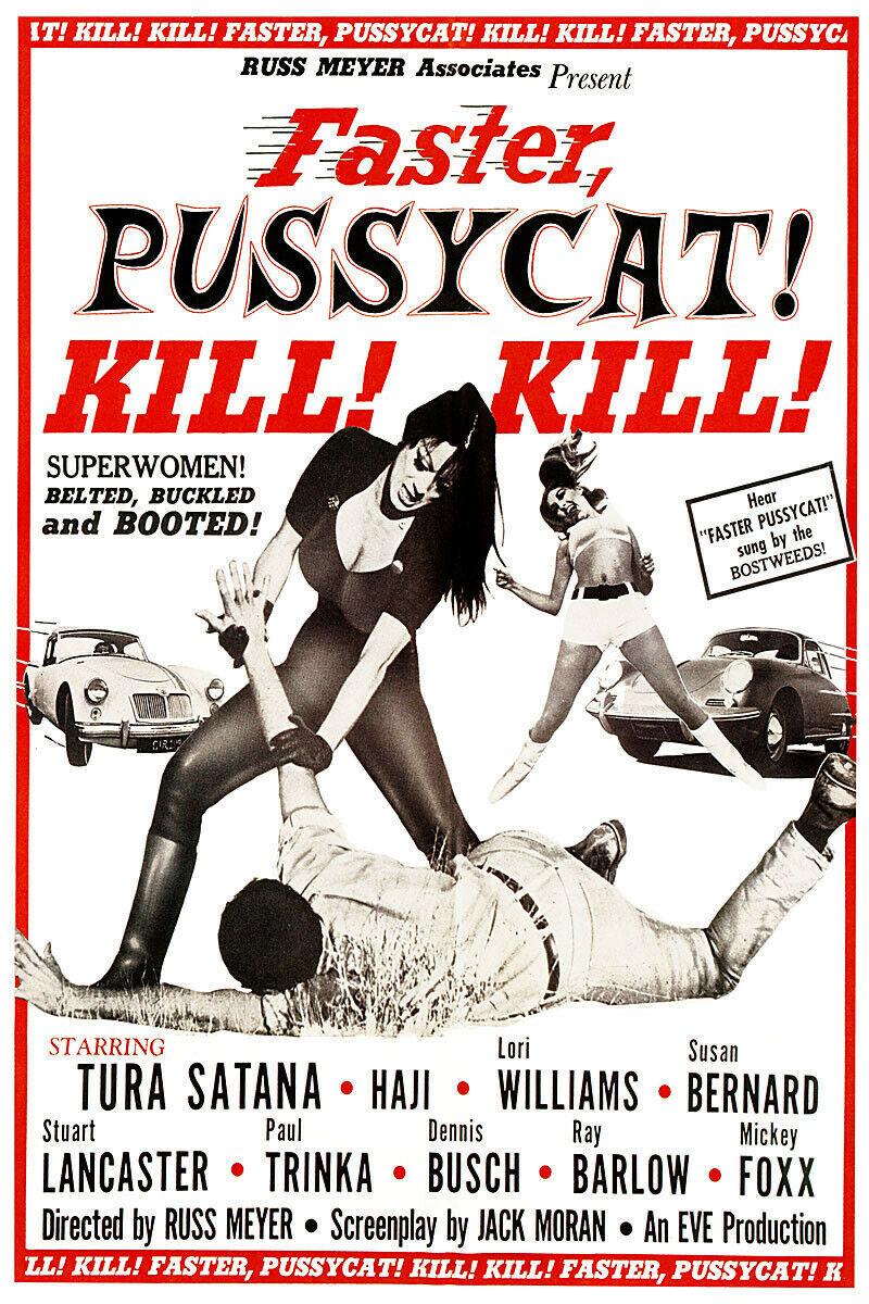 Faster pussycat kill kill poster 24x36
