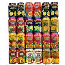 Hawaiian Sun Tropical Premium Juice Drink Party Bundle with all 10 Different Fla - $78.95