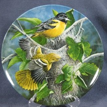 Baltimore Oriole 3rd Birds of Garden Knowles Collector Plate Kevin Danie... - $15.97