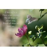 """""""Swallowtail Rising,"""" an A. Rose Designs (tm) note card - $5.95+"""
