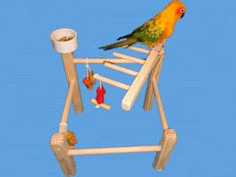 Bird Toy Play Gym Cockatiels,Conures,Senegals,Cage Top With 1 Treat Cup-... - £14.29 GBP