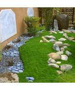 Irish Moss Ground Cover Seeds Sagina Subulata Seed 200Pcs Ornamental Gra... - €16,61 EUR