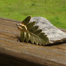 Real fern leaf dipped in 24k yellow gold pendant4 thumb200
