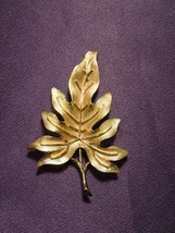 Vintage Crown Trifari Gold Tone Brushed Satin Veined Oak Leaf Pin Brooch - $29.70