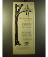1950 Pennsylvania Motor Oil Ad - We're not going out on a limb - $14.99
