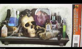 Gothic Halloween Prop SKULL LABORATORY FLOOR WALL GRABBER Window Door De... - $4.92