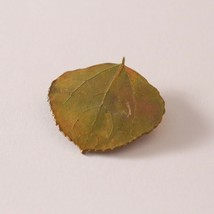 Vintage Nature Autumn Fall Leaf Pin Brooch - $8.91