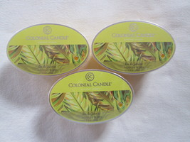3 Colonial Candle ~~HIBISCUS & JAVA~~ Simmer Snaps/ Tarts 2.4oz Oval - $16.00