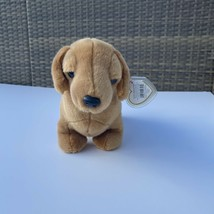 Ty Beanie Buddy Weenie the Dachshund Dog 1999, Retired & New Mint Condition - $15.83