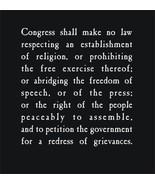 FIRST AMENDMENT Freedom of Speech T-Shirt - $17.99