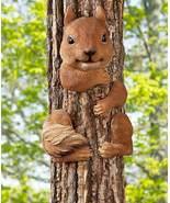 Squirrel Tree Hugger - $21.50