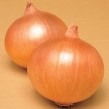 2 Grams Seeds of Gate Keeper Onion - $29.40