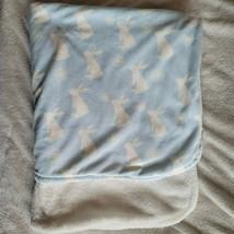 Blankets & Beyond Plush Blue White Bunny Dandelions Baby Blanket Securit... - $18.80