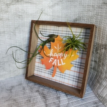 """Fall Decor Plaque, live air plants, Wooden shadow box, autumn leaf """"Happy Fall"""" image 2"""
