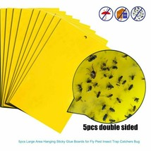 Strong Flies Traps Bugs Sticky Board Catching Aphid Insects Pest Fungus ... - $6.92+
