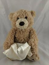 "Baby Gund Peek a Boo Bear Plush 10"" 320193 Stuffed Animal toy - $10.95"
