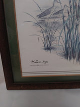 "Yellow-Legs ""Tonanus Melanolecus"" by J Lockhart Artist Print image 5"