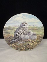 Snowy Owl 1st Issue in Under Mother's Wing by Knowles Collector Plate - $9.89