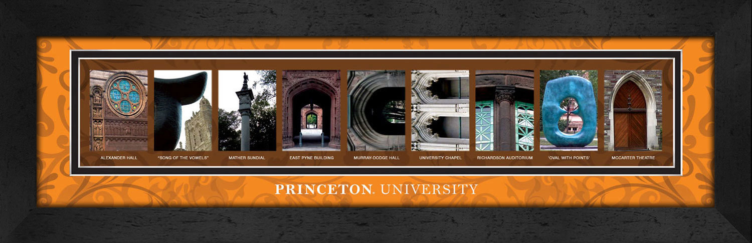 Primary image for Princeton University Officially Licensed Framed Campus Letter Art