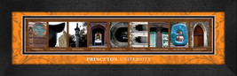 Princeton University Officially Licensed Framed Campus Letter Art - $39.95