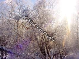 Digital photo download Winter Scene in 2013 Sharbot Lake Ont Canafda - $1.25