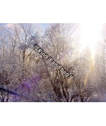 Digital photo download Winter Scene in 2013 Sharbot Lake Ont Canafda - $1.25
