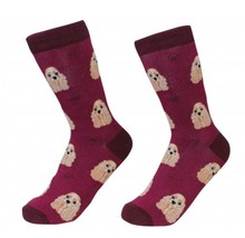 Cocker Spaniel Socks Unisex Dog Cotton/Poly One size fits most - $11.99