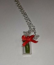 Christmas Pickle Necklace Silver Bottle Midst Holiday Charm Tradition - $7.00