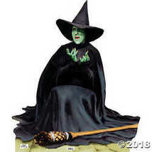 The Wicked Witch Melting - The Wizard of Oz 75th Anniversary  - $54.86