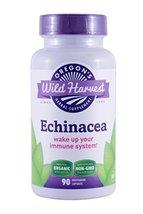 Oregon's Wild Harvest Echinacea (1x90vcap) - $18.99