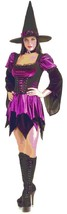 Sexy Witch Wicked Purple Secret Wishes Fancy Dress Up Halloween Adult Costume - $58.53
