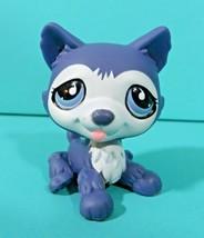 Littlest Pet Shop Puppy Dog Husky Dark Gray Blue Teardrop Eyes 785 Authe... - $177,98 MXN