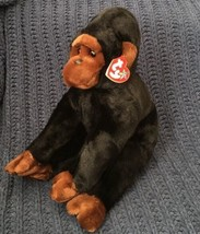 "Ty Beanie Buddy Congo the Gorilla 1999 Ape Monkey Plush Stuffed Animal MWMT 12"" - $15.83"