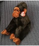 Ty Beanie Buddy Congo the Gorilla 1999 Ape Monkey Plush Stuffed Animal M... - $15.83