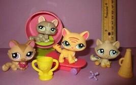 Littlest Pet Shop LPS Cat Kitten #1584 #1370 #1572 #1364 Short Hair Persian Lot - $35.00