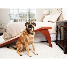 "Solvit PetSafe CozyUp Bed Ramp for Dogs and Cats, 70"" L x 16"" W x 25"" H. - $121.79"