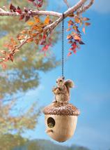 Squirrel on Acorn Birdhouse - $19.95