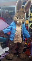Peter Rabbit Mascot Costume Adult Rabbit Costume For Sale - $350.00