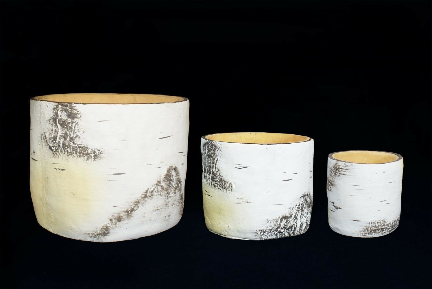 Primary image for Cactus Plant Bonsai Tree Pot and Planter Birch Tree Set of 3 pieces