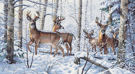 """Dimensions Gold Collection Counted Cross Stitch Kit 18""""X10""""-Woodland Winter - $42.79"""