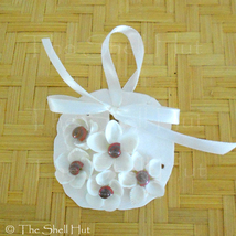 Sand Dollar Shell Flower Seashell Christmas Ornament Coastal Decor Beach... - $14.99