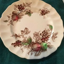 10 Inch Dinner Plate Harvest TimeJohnson Brothers brown fruit scallop... - $21.28