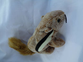"TY 1999 Chipper The Chipmunk Beanie Baby 7"" Long image 5"