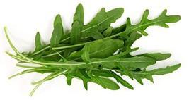 Sow No GMO Arugula Salad Rocket Roquette Rucola Rugula Wild Child Italia... - $2.94