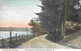 Wakefield Road Looking South Milton New Hampshire 1910c postcard - $6.44
