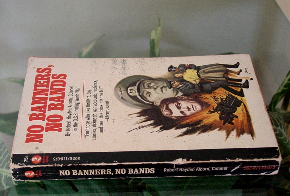 1965 Robert Hayden Alcorn NO BANNERS, NO BANDS Curtis Books Vintage Paperback